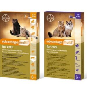 Advantage Multi Topical Solution for Cats main