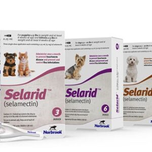 Selarid (selamectin) Topical for Dogs and cats main