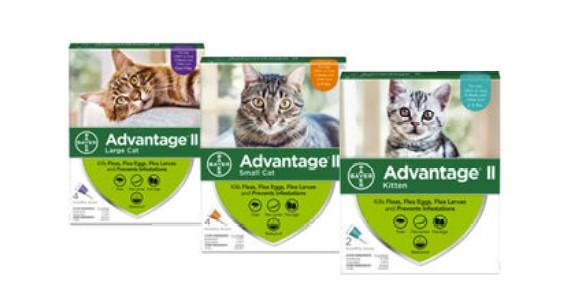 advantage II FOR CATS main